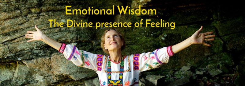 Emotional Wisdom banner