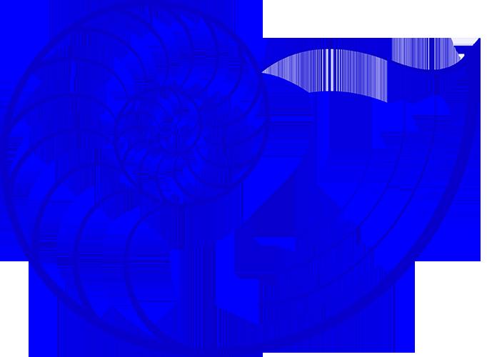 nautilus-logo-solo 500HR