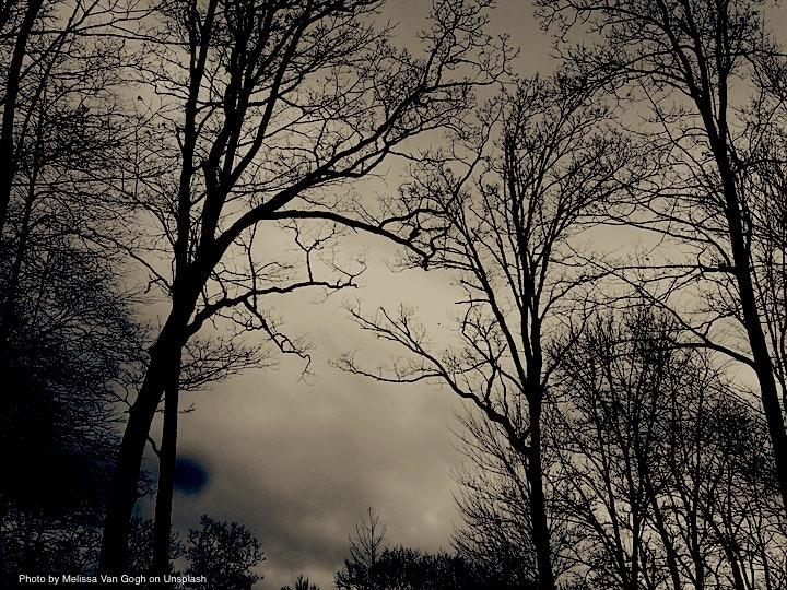 winter solstice darkness